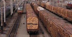 Ж/д перевозка леса