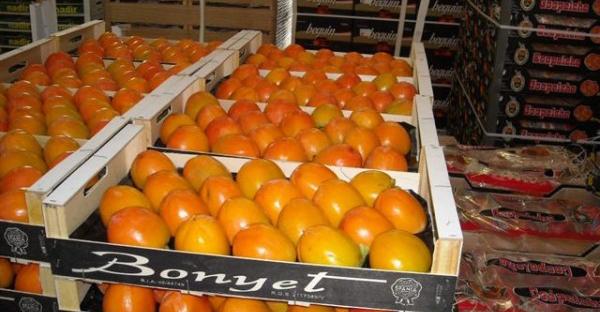 Ж/д перевозка овощей и фруктов